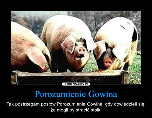 Porozumienie Gowina