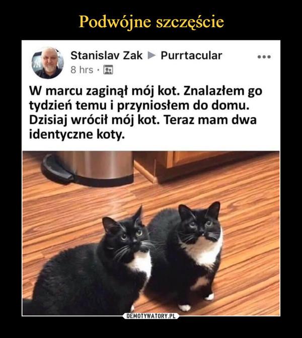 –  Stanislav Zak ► Purrtacular8 hrs •W marcu zaginął mój kot. Znalazłem gotydzień temu i przyniosłem do domu.Dzisiaj wrócił mój kot. Teraz mam dwaidentyczne koty.
