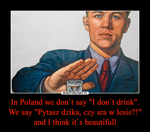 """In Poland we don`t say """"I don`t drink"""". We say """"Pytasz dzika, czy sra w lesie?!"""" and I think it`s beautifull –"""