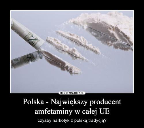 Polska - Największy producent amfetaminy w całej UE