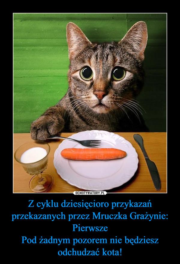 Z cyklu dziesięcioro przykazań przekazanych przez Mruczka Grażynie:PierwszePod żadnym pozorem nie będziesz odchudzać kota! –