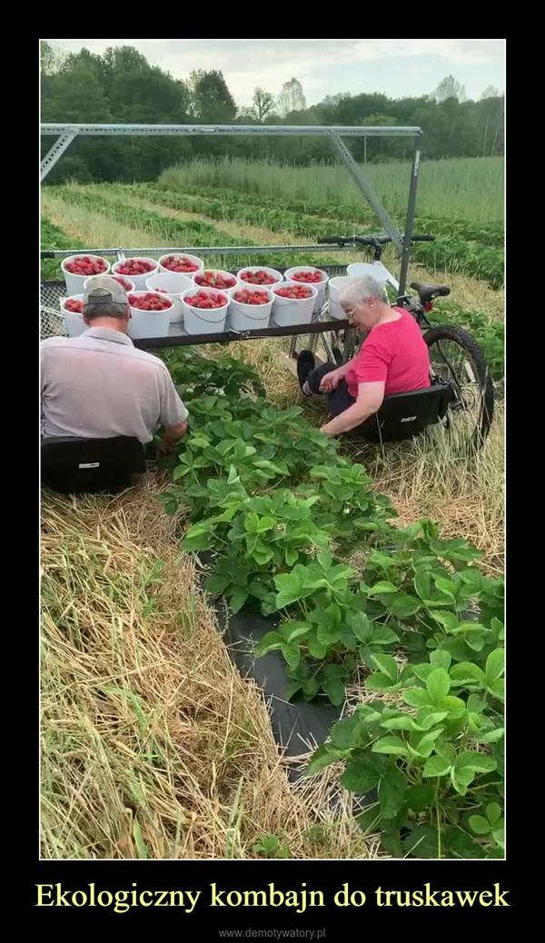 Ekologiczny kombajn do truskawek –