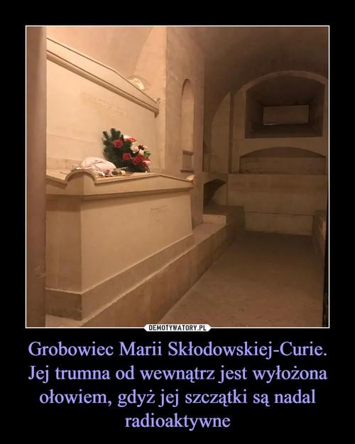 Grobowiec Marii Skłodowskiej-Curie. Jej trumna od wewnątrz jest wyłożona ołowiem, gdyż jej szczątki są nadal radioaktywne