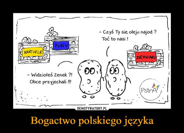 Bogactwo polskiego języka –