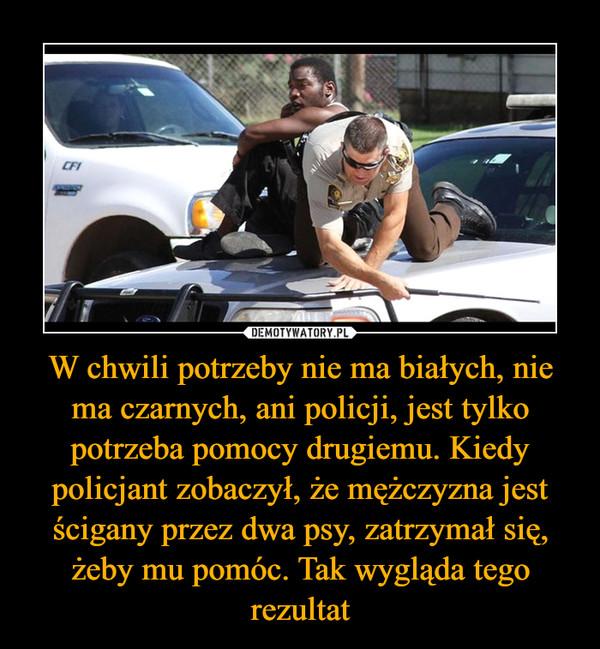 W chwili potrzeby nie ma białych, nie ma czarnych, ani policji, jest tylko potrzeba pomocy drugiemu. Kiedy policjant zobaczył, że mężczyzna jest ścigany przez dwa psy, zatrzymał się, żeby mu pomóc. Tak wygląda tego rezultat –