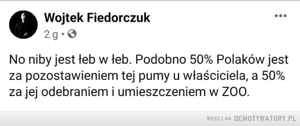 Spór o pumę? –  f Wojtek Fiedorczuk2 g.0...No niby jest łeb w łeb. Podobno 50% Polaków jestza pozostawieniem tej pumy u właściciela, a 50%za jej odebraniem i umieszczeniem w Z00.WIĘCEJ NA DEMOTYWATORY.PL