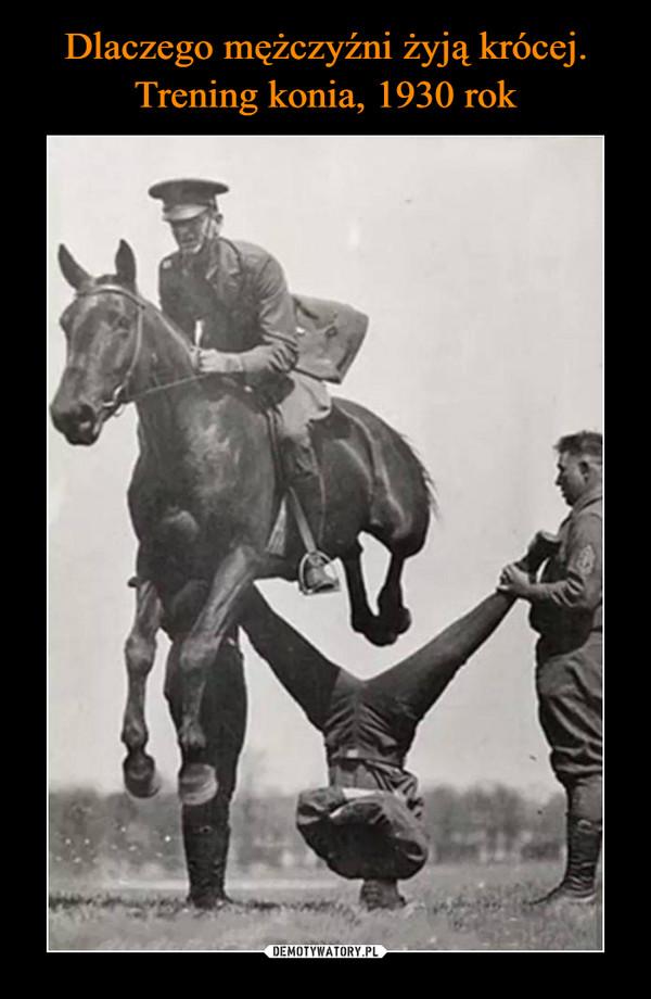 Dlaczego mężczyźni żyją krócej. Trening konia, 1930 rok
