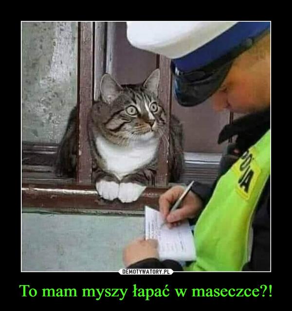 To mam myszy łapać w maseczce?! –