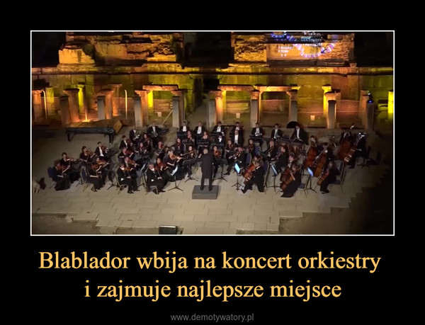 Blablador wbija na koncert orkiestry i zajmuje najlepsze miejsce –