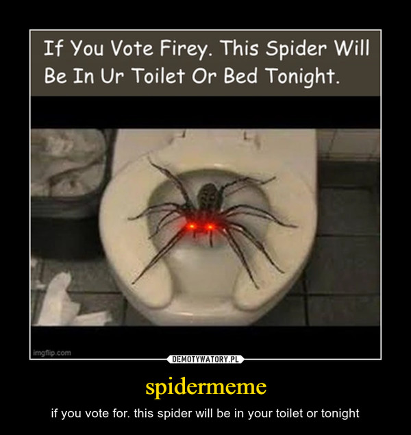 spidermeme – if you vote for. this spider will be in your toilet or tonight