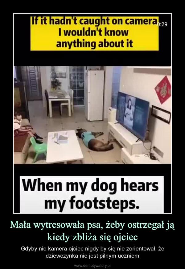 Mała wytresowała psa, żeby ostrzegał ją kiedy zbliża się ojciec – Gdyby nie kamera ojciec nigdy by się nie zorientował, że dziewczynka nie jest pilnym uczniem