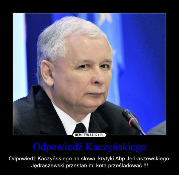 Odpowiedź Kaczyńskiego – Odpowiedź Kaczyńskiego na słowa  krytyki Abp Jędraszewskiego: Jędraszewski przestań mi kota prześladować !!!