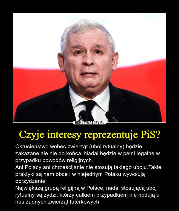 Czyje interesy reprezentuje PiS? – Okrucieństwo wobec zwierząt (ubój rytualny) będzie zakazane ale nie do końca. Nadal będzie w pełni legalne w przypadku powodów religijnych.Ani Polacy ani chrześcijanie nie stosują takiego uboju.Takie praktyki są nam obce i w niejednym Polaku wywołują obrzydzenie.Największą grupą religijną w Polsce, nadal stosującą ubój rytualny są żydzi, którzy całkiem przypadkiem nie hodują u nas żadnych zwierząt futerkowych.