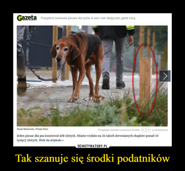 Tak szanuje się środki podatników –  Jeden pisuar dla psa kosztował 408 złotych. Miasto wydało na 26 takich drewnianych słupków ponad 10 tysięcy złotych
