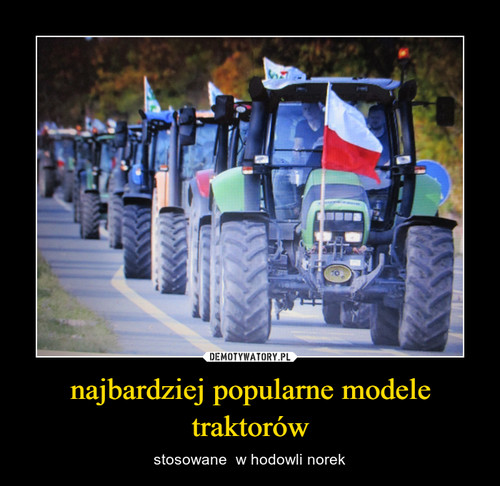 najbardziej popularne modele traktorów