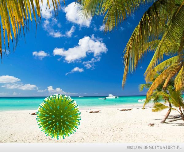Ministerstwo Zdrowia:5300 nowych przypadków COVID-19. Bilans zakażonych 121638, wyzdrowiało 78982Tymczasem wirus grypy: –