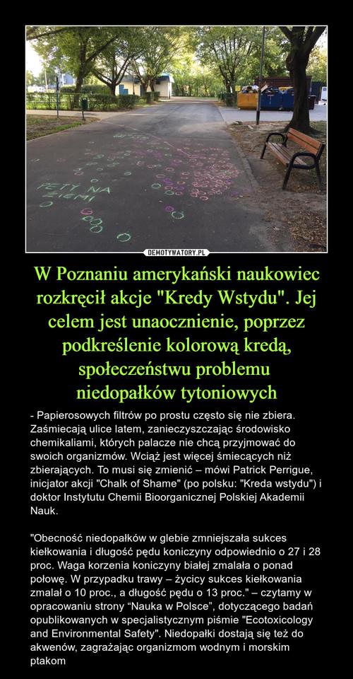 """W Poznaniu amerykański naukowiec rozkręcił akcje """"Kredy Wstydu"""". Jej celem jest unaocznienie, poprzez podkreślenie kolorową kredą, społeczeństwu problemu  niedopałków tytoniowych"""