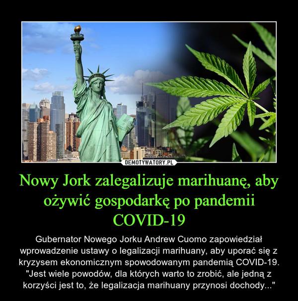 """Nowy Jork zalegalizuje marihuanę, aby ożywić gospodarkę po pandemii COVID-19 – Gubernator Nowego Jorku Andrew Cuomo zapowiedział wprowadzenie ustawy o legalizacji marihuany, aby uporać się z kryzysem ekonomicznym spowodowanym pandemią COVID-19. """"Jest wiele powodów, dla których warto to zrobić, ale jedną z korzyści jest to, że legalizacja marihuany przynosi dochody..."""""""
