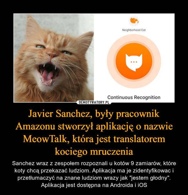 Javier Sanchez, były pracownik Amazonu stworzył aplikację o nazwie MeowTalk, która jest translatorem kociego mruczenia
