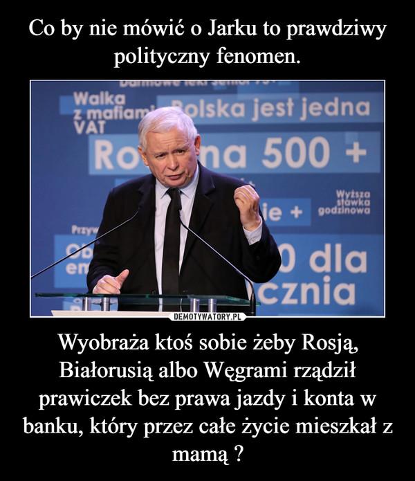 Wyobraża ktoś sobie żeby Rosją, Białorusią albo Węgrami rządził prawiczek bez prawa jazdy i konta w banku, który przez całe życie mieszkał z mamą ? –