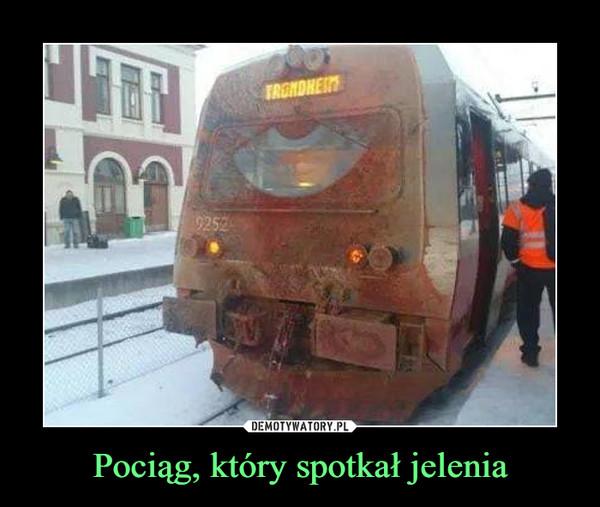Pociąg, który spotkał jelenia –