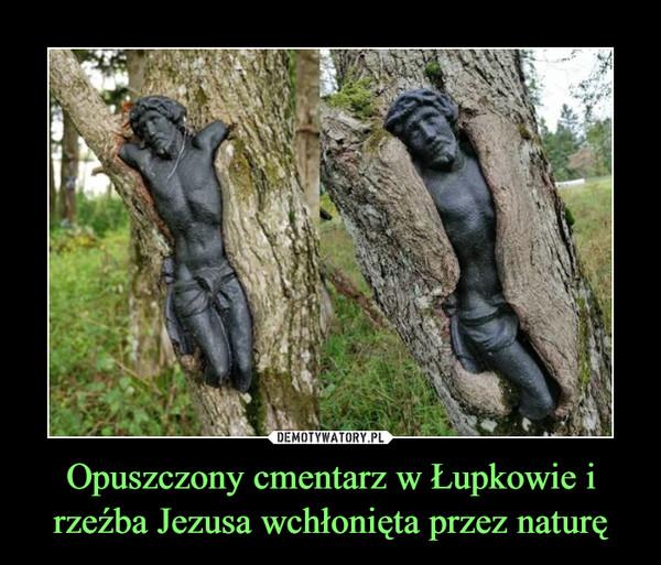 Opuszczony cmentarz w Łupkowie i rzeźba Jezusa wchłonięta przez naturę –