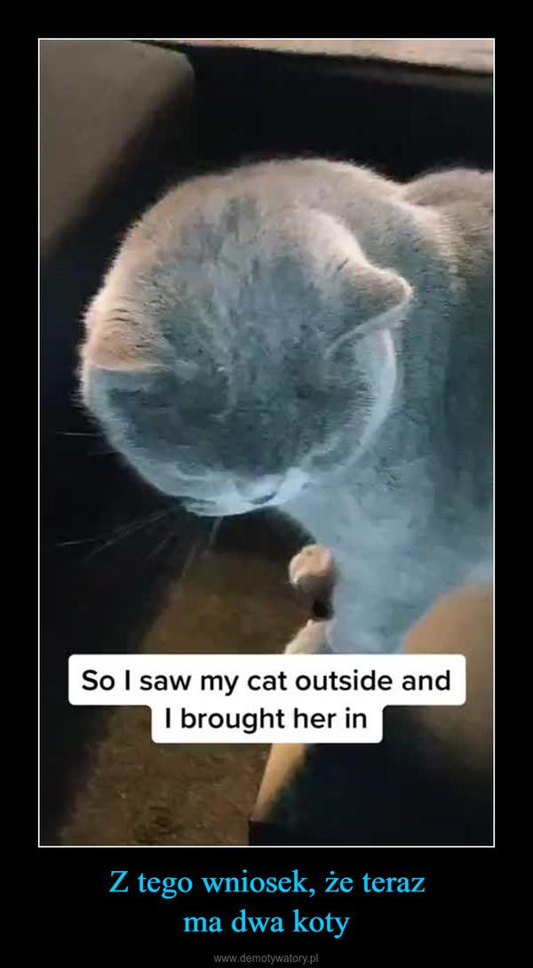 Z tego wniosek, że terazma dwa koty –