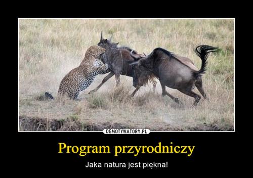 Program przyrodniczy