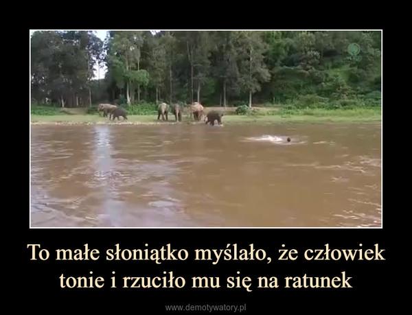 To małe słoniątko myślało, że człowiek tonie i rzuciło mu się na ratunek –