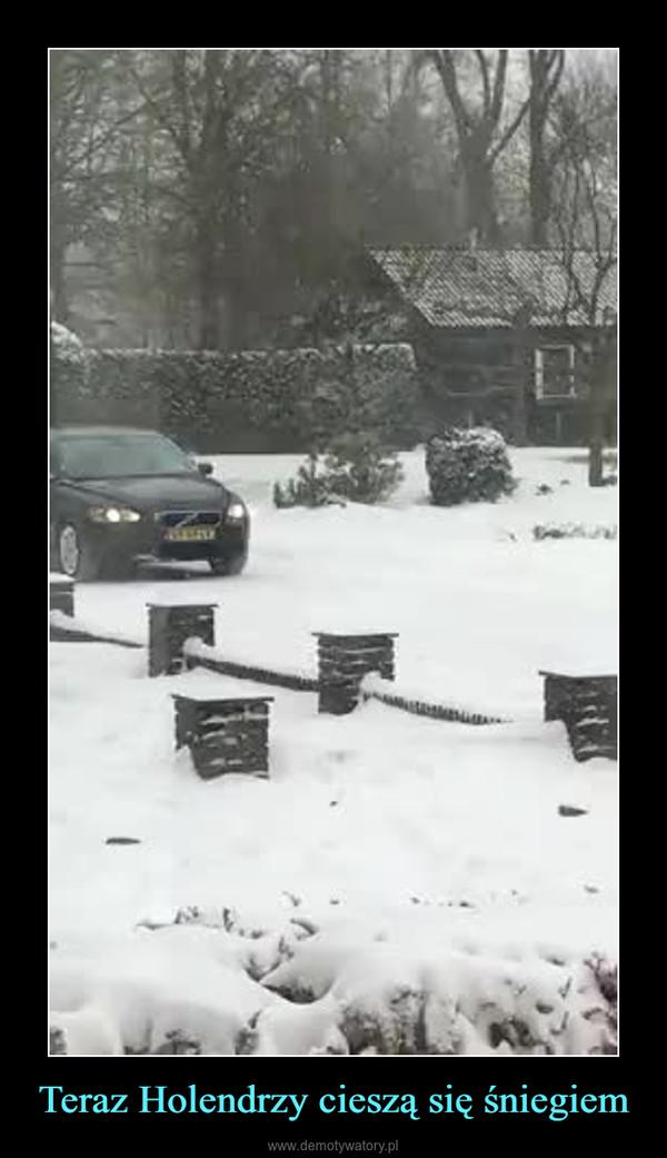 Teraz Holendrzy cieszą się śniegiem –