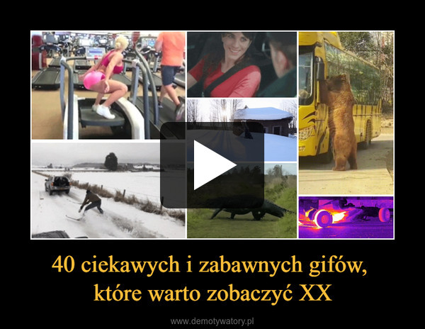 40 ciekawych i zabawnych gifów, które warto zobaczyć XX –