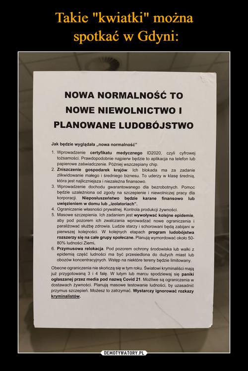 """Takie """"kwiatki"""" można  spotkać w Gdyni:"""