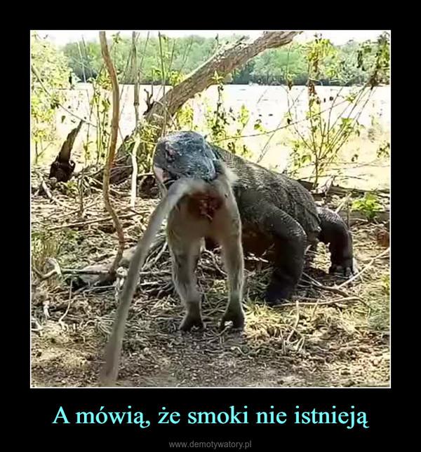 A mówią, że smoki nie istnieją –