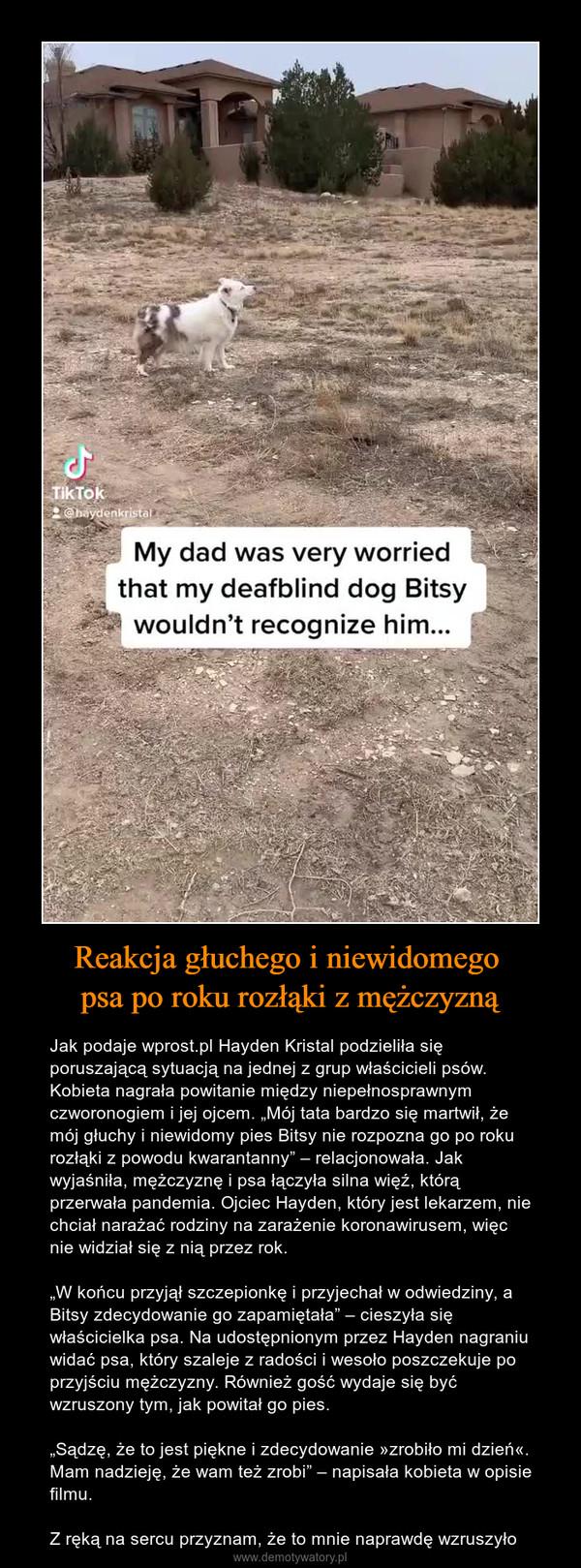 """Reakcja głuchego i niewidomego psa po roku rozłąki z mężczyzną – Jak podaje wprost.pl Hayden Kristal podzieliła się poruszającą sytuacją na jednej z grup właścicieli psów. Kobieta nagrała powitanie między niepełnosprawnym czworonogiem i jej ojcem. """"Mój tata bardzo się martwił, że mój głuchy i niewidomy pies Bitsy nie rozpozna go po roku rozłąki z powodu kwarantanny"""" – relacjonowała. Jak wyjaśniła, mężczyznę i psa łączyła silna więź, którą przerwała pandemia. Ojciec Hayden, który jest lekarzem, nie chciał narażać rodziny na zarażenie koronawirusem, więc nie widział się z nią przez rok.""""W końcu przyjął szczepionkę i przyjechał w odwiedziny, a Bitsy zdecydowanie go zapamiętała"""" – cieszyła się właścicielka psa. Na udostępnionym przez Hayden nagraniu widać psa, który szaleje z radości i wesoło poszczekuje po przyjściu mężczyzny. Również gość wydaje się być wzruszony tym, jak powitał go pies.""""Sądzę, że to jest piękne i zdecydowanie »zrobiło mi dzień«. Mam nadzieję, że wam też zrobi"""" – napisała kobieta w opisie filmu.Z ręką na sercu przyznam, że to mnie naprawdę wzruszyło"""
