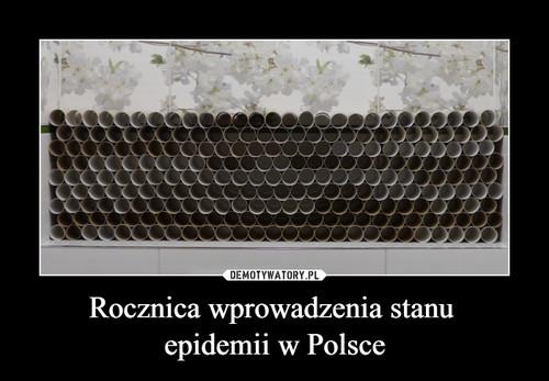Rocznica wprowadzenia stanu  epidemii w Polsce