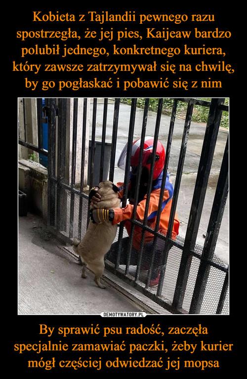 Kobieta z Tajlandii pewnego razu spostrzegła, że jej pies, Kaijeaw bardzo polubił jednego, konkretnego kuriera, który zawsze zatrzymywał się na chwilę, by go pogłaskać i pobawić się z nim By sprawić psu radość, zaczęła specjalnie zamawiać paczki, żeby kurier mógł częściej odwiedzać jej mopsa
