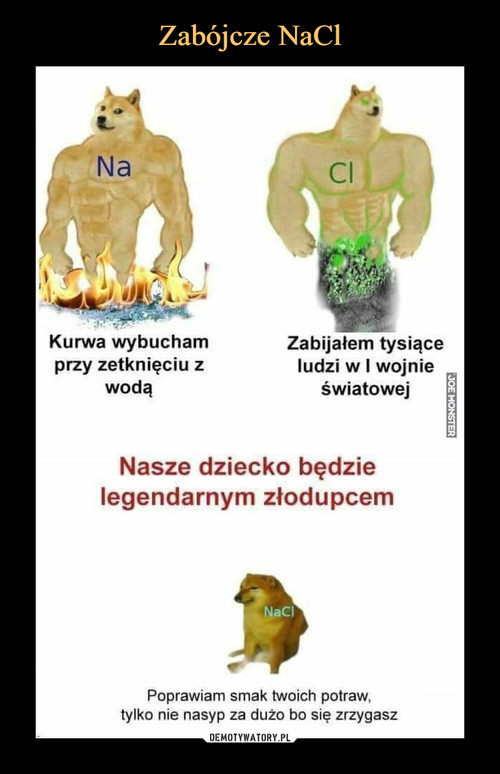 Zabójcze NaCl