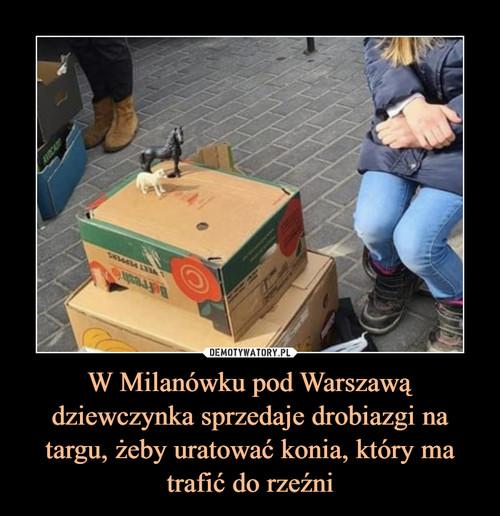 W Milanówku pod Warszawą dziewczynka sprzedaje drobiazgi na targu, żeby uratować konia, który ma trafić do rzeźni