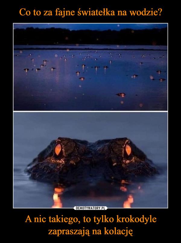 A nic takiego, to tylko krokodyle zapraszają na kolację –