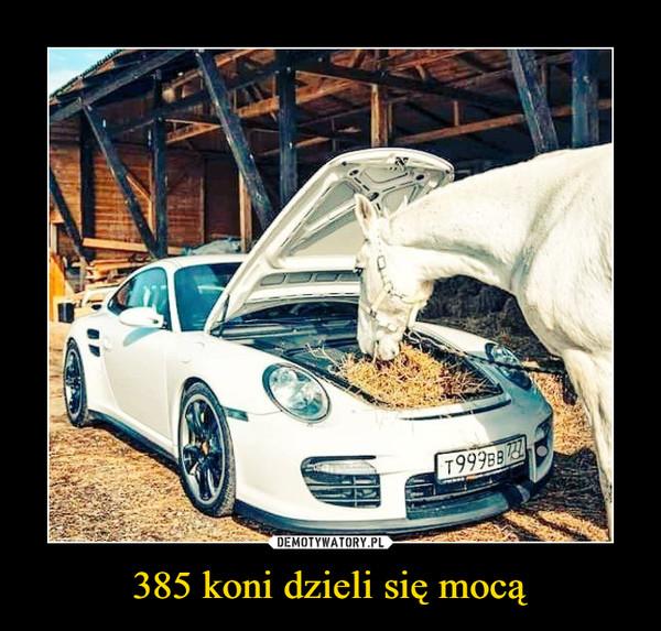 385 koni dzieli się mocą –