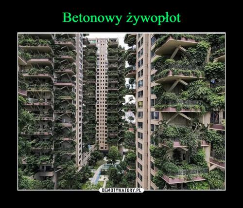 Betonowy żywopłot