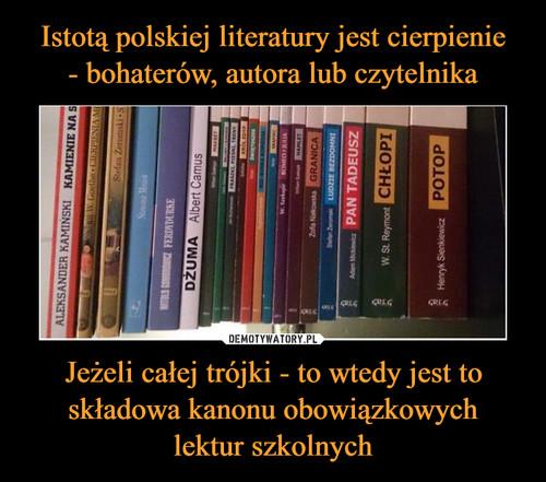 Istotą polskiej literatury jest cierpienie - bohaterów, autora lub czytelnika Jeżeli całej trójki - to wtedy jest to składowa kanonu obowiązkowych lektur szkolnych