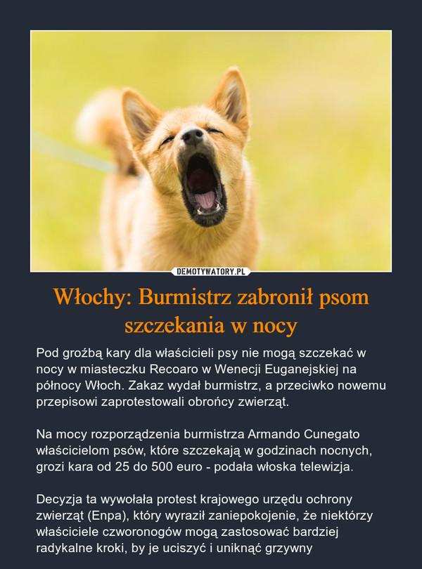 Włochy: Burmistrz zabronił psom szczekania w nocy – Pod groźbą kary dla właścicieli psy nie mogą szczekać w nocy w miasteczku Recoaro w Wenecji Euganejskiej na północy Włoch. Zakaz wydał burmistrz, a przeciwko nowemu przepisowi zaprotestowali obrońcy zwierząt.Na mocy rozporządzenia burmistrza Armando Cunegato właścicielom psów, które szczekają w godzinach nocnych, grozi kara od 25 do 500 euro - podała włoska telewizja.Decyzja ta wywołała protest krajowego urzędu ochrony zwierząt (Enpa), który wyraził zaniepokojenie, że niektórzy właściciele czworonogów mogą zastosować bardziej radykalne kroki, by je uciszyć i uniknąć grzywny