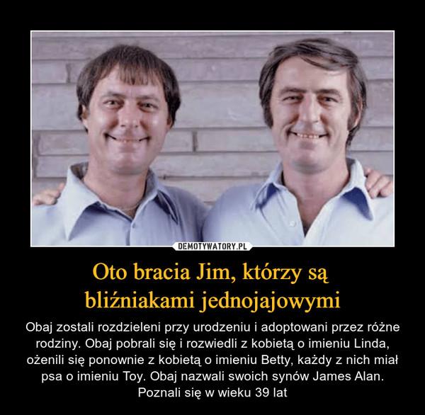 Oto bracia Jim, którzy są bliźniakami jednojajowymi – Obaj zostali rozdzieleni przy urodzeniu i adoptowani przez różne rodziny. Obaj pobrali się i rozwiedli z kobietą o imieniu Linda, ożenili się ponownie z kobietą o imieniu Betty, każdy z nich miał psa o imieniu Toy. Obaj nazwali swoich synów James Alan. Poznali się w wieku 39 lat