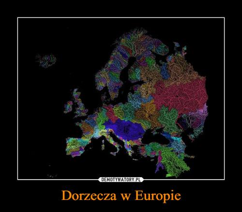 Dorzecza w Europie