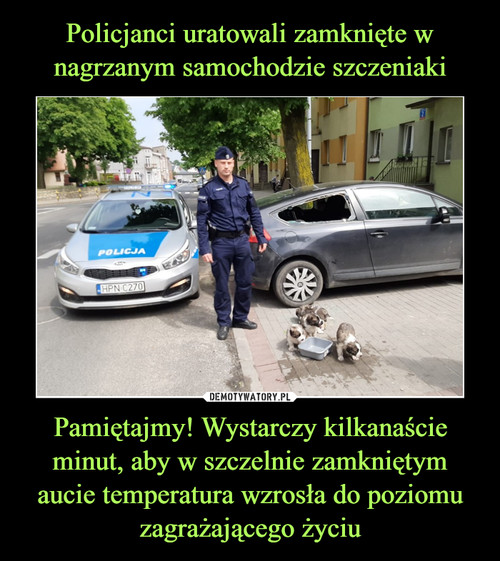 Policjanci uratowali zamknięte w nagrzanym samochodzie szczeniaki Pamiętajmy! Wystarczy kilkanaście minut, aby w szczelnie zamkniętym aucie temperatura wzrosła do poziomu zagrażającego życiu