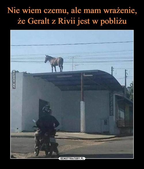 Nie wiem czemu, ale mam wrażenie, że Geralt z Rivii jest w pobliżu