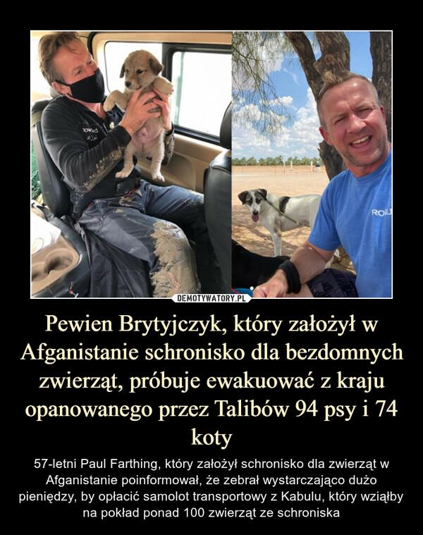 Pewien Brytyjczyk, który założył w Afganistanie schronisko dla bezdomnych zwierząt, próbuje ewakuować z kraju opanowanego przez Talibów 94 psy i 74 koty – 57-letni Paul Farthing, który założył schronisko dla zwierząt w Afganistanie poinformował, że zebrał wystarczająco dużo pieniędzy, by opłacić samolot transportowy z Kabulu, który wziąłby na pokład ponad 100 zwierząt ze schroniska