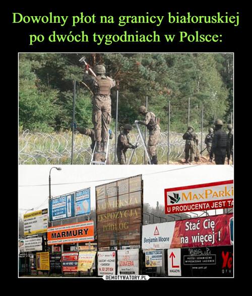 Dowolny płot na granicy białoruskiej po dwóch tygodniach w Polsce: