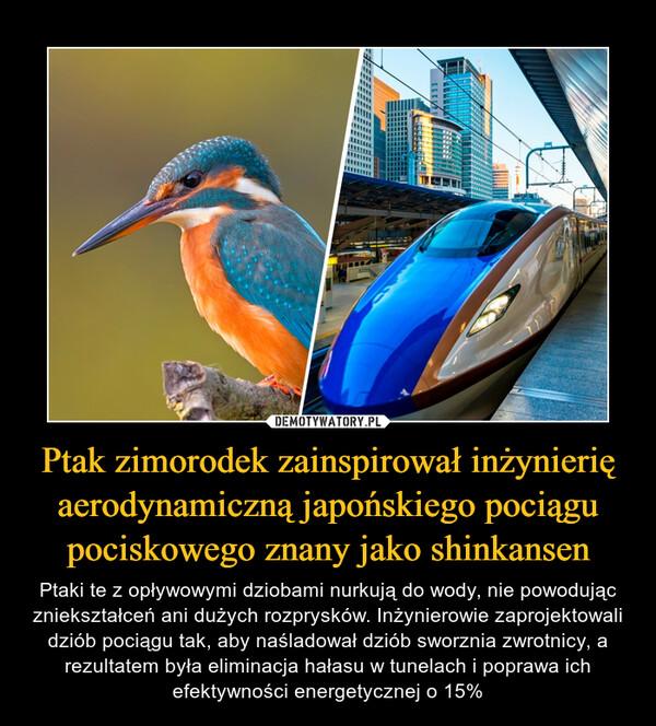 Ptak zimorodek zainspirował inżynierię aerodynamiczną japońskiego pociągu pociskowego znany jako shinkansen – Ptaki te z opływowymi dziobami nurkują do wody, nie powodując zniekształceń ani dużych rozprysków. Inżynierowie zaprojektowali dziób pociągu tak, aby naśladował dziób sworznia zwrotnicy, a rezultatem była eliminacja hałasu w tunelach i poprawa ich efektywności energetycznej o 15%
